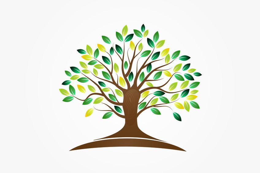 Eine Illustration eines Stammbaums